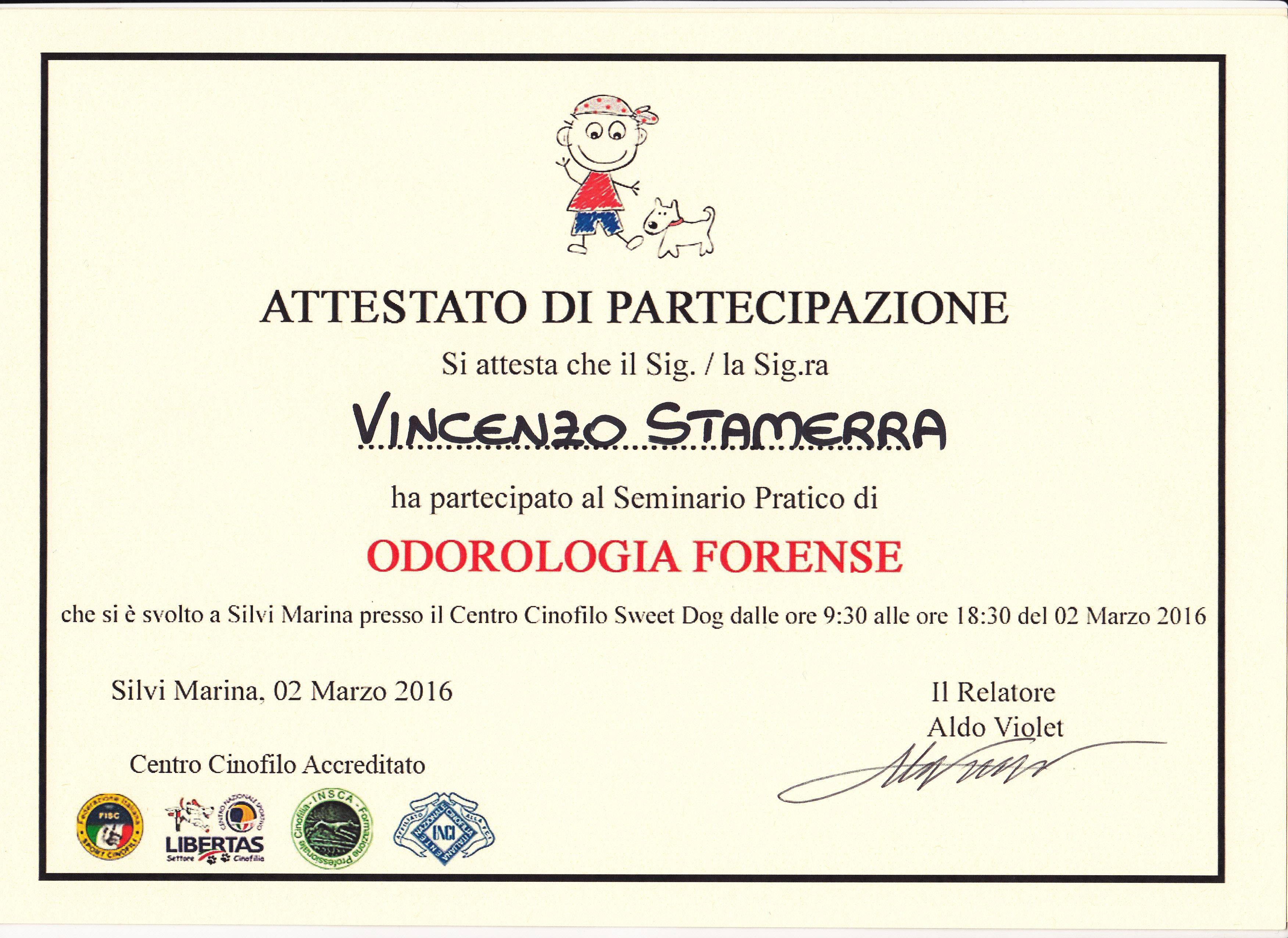 Attestati Di Partecipazione Stamerra Vincenzo